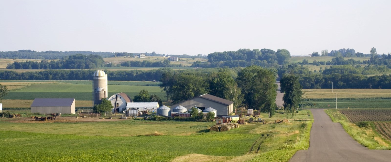 Wellington County Farmland