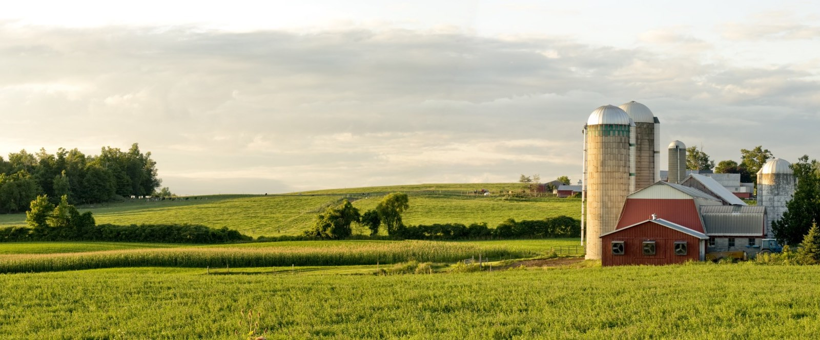 view of farmland with barn and silo