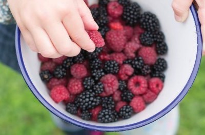 hand reaching into a bowl of berries