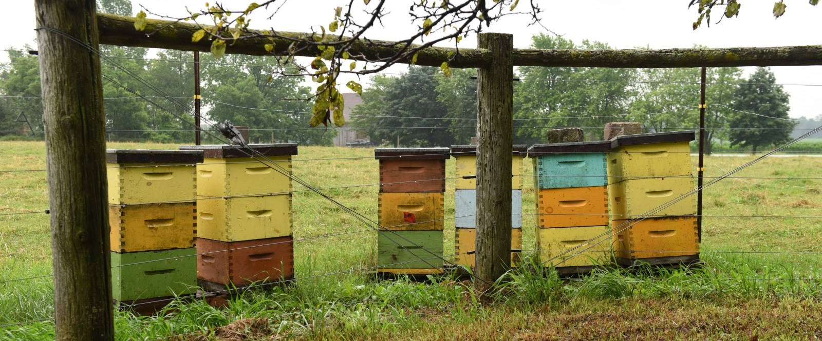 stacks of bee hive boxes in a field