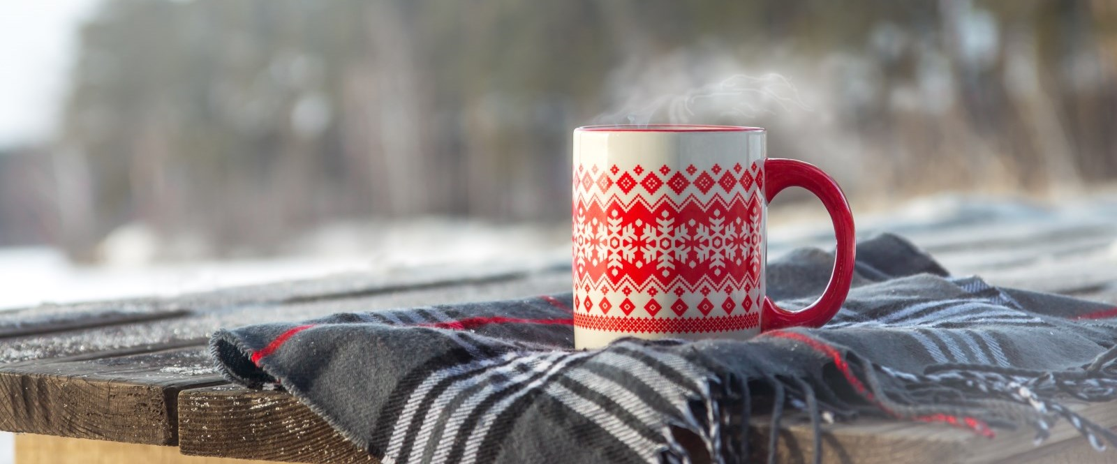 hot mug on plaid scarf overlooking conservation