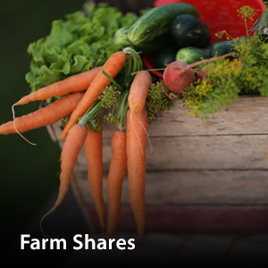 Visit our Farm Shares page