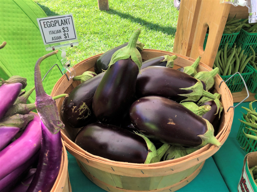 basket of eggplant
