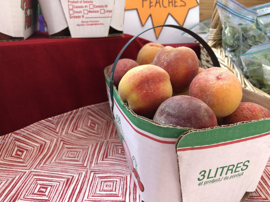 Ontario peaches brought in from Niagara