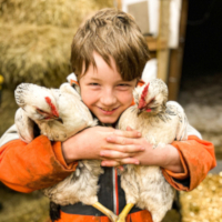 boy holding chickens