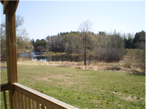 View of pond from Green Legacy picnic shelter