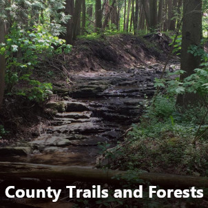 County trails and forests