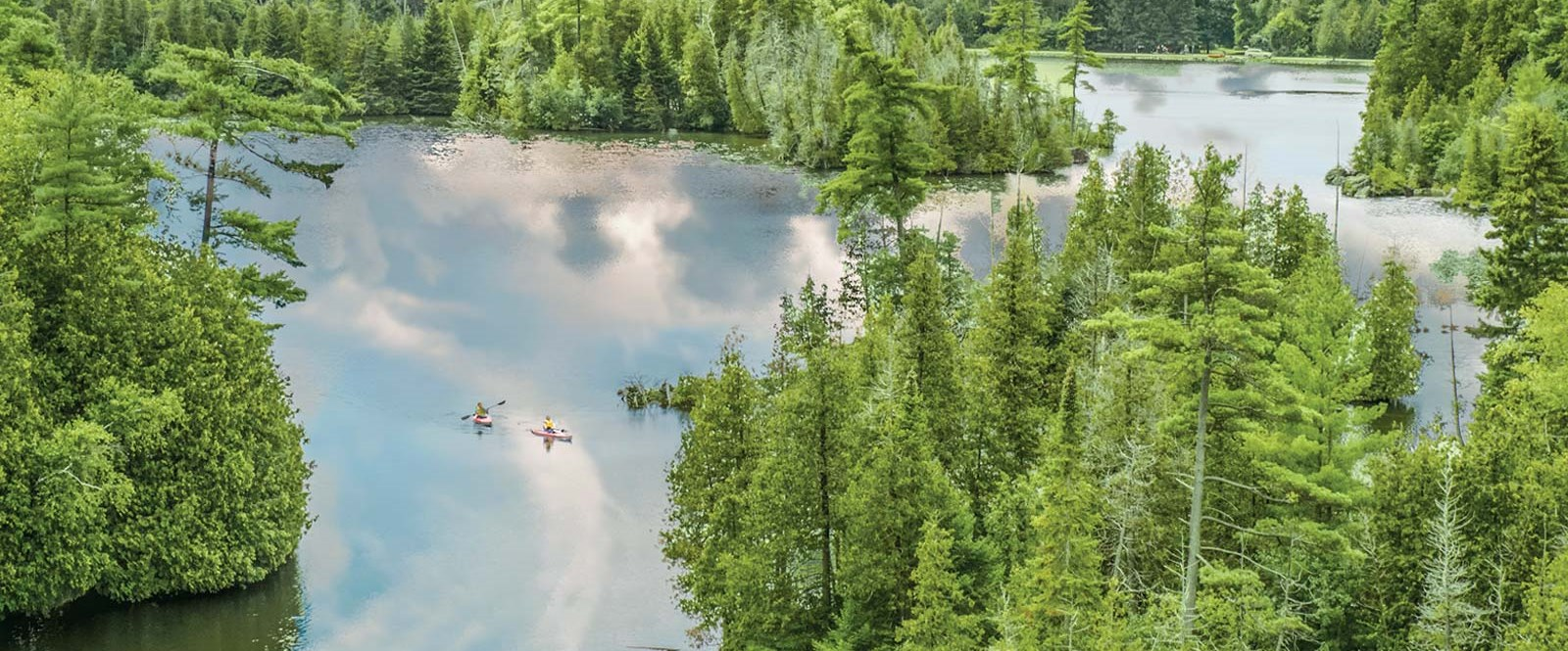ariel shot of two canoes in lake surrounded by forest