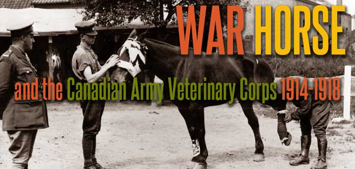 War Horse exhibit banner image