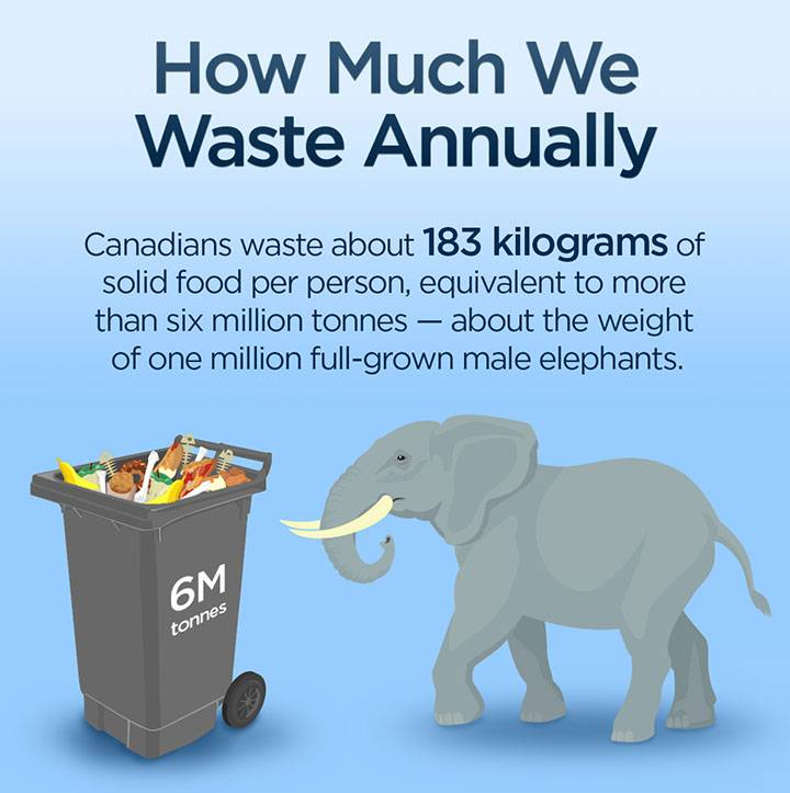 Canadians waste more than six million tonnes of food annually